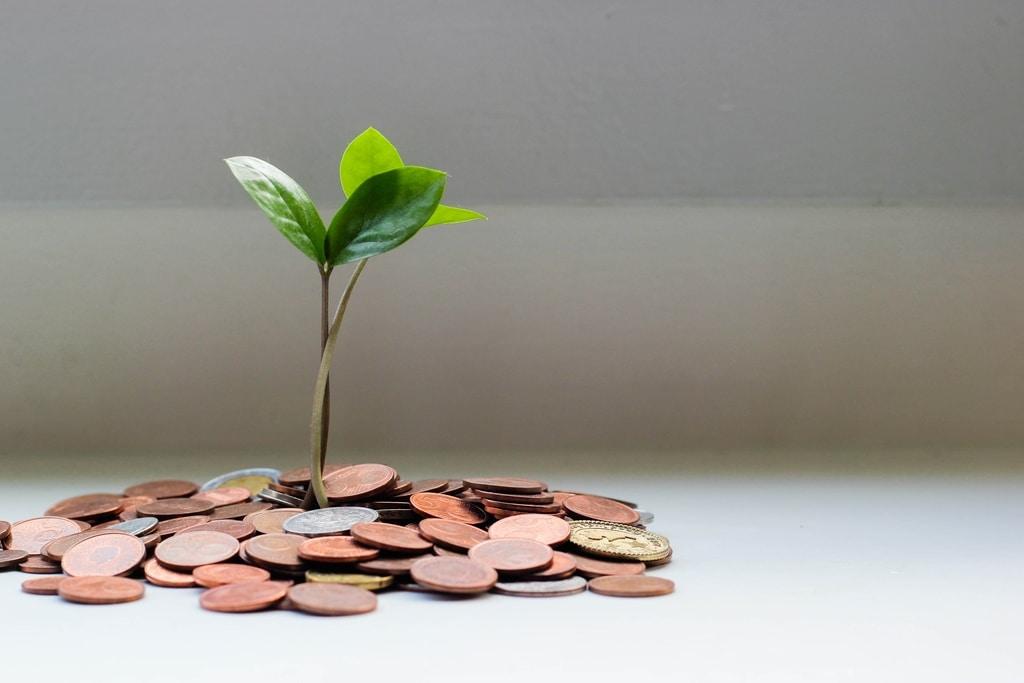 A Green Economy Post- COVID-19: Environmentalist's Dream or Economic Imperative?