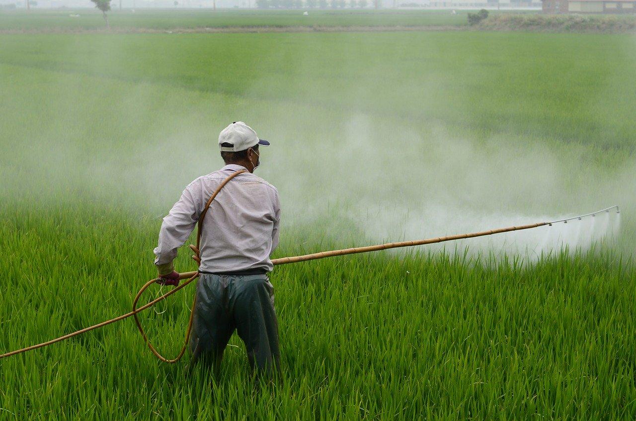 Brazil pesticides