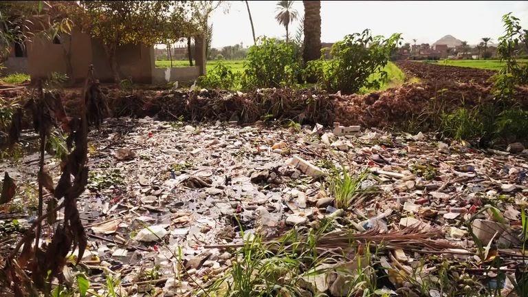 Three-Quarters of Fish in The Nile River Contain Microplastics- Report