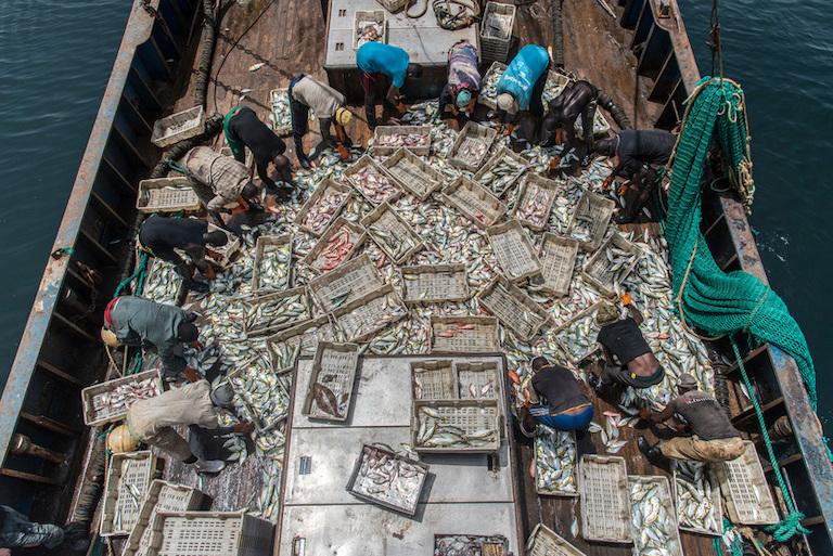china fishing regulations