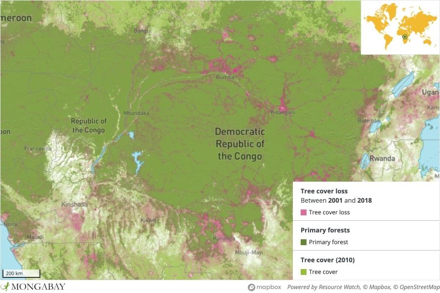 drc deforestation