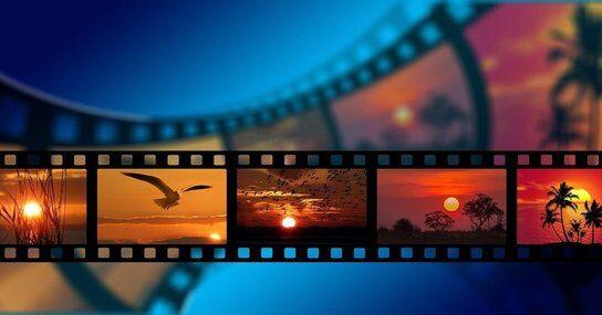 Top 17 Best Environmental Films of 2021