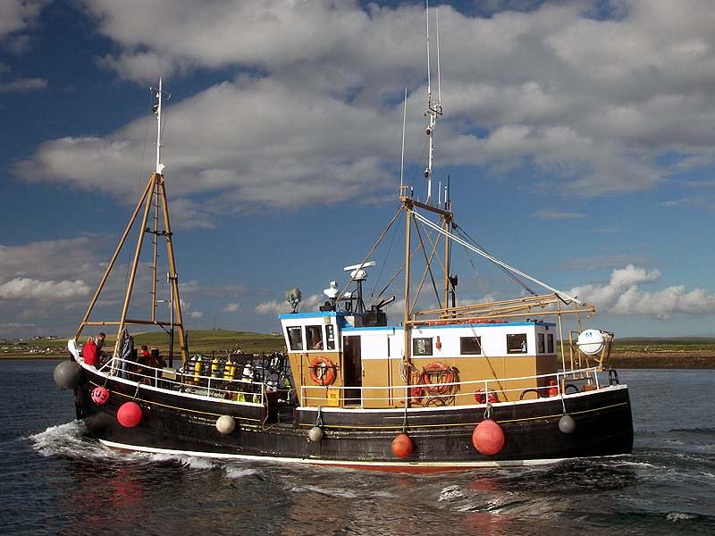 Illegal Fishing Devastates the Seas and Abuses Crews
