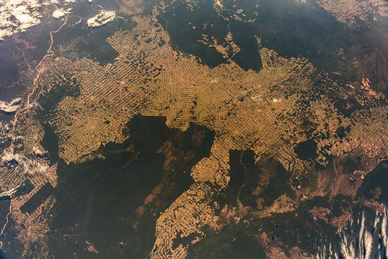 Brazil Guts Agencies, 'Sabotaging Environmental Protection' in Amazon: Report