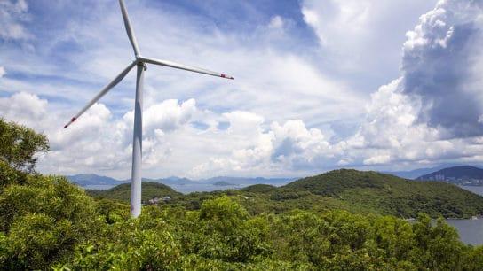 hong kong renewable energy