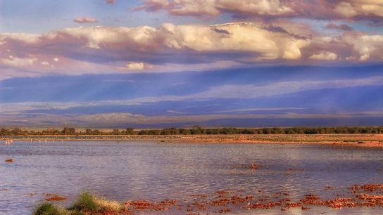 Kenya Environment Tribunal Protects Open Rangeland
