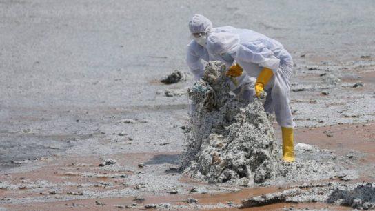 Sinking of Sri Lanka Cargo Ship Stokes Fears of Oil Spill Catastrophe
