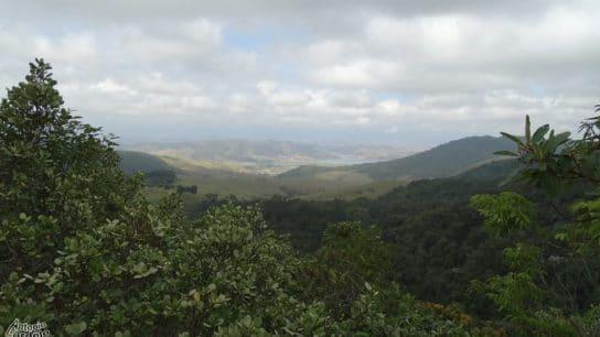 Land Conflicts in Brazil Break Record Under Bolsonaro