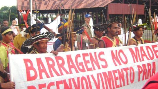 Under Assault at Home, Indigenous Leaders Get a Violent Welcome in Brasília