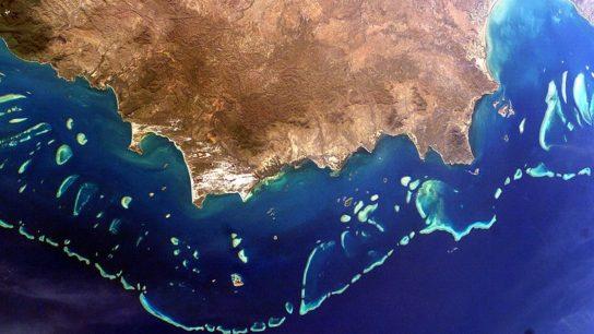 "Australia Prevents UNESCO Downgrading the Great Barrier Reef To ""In Danger"""