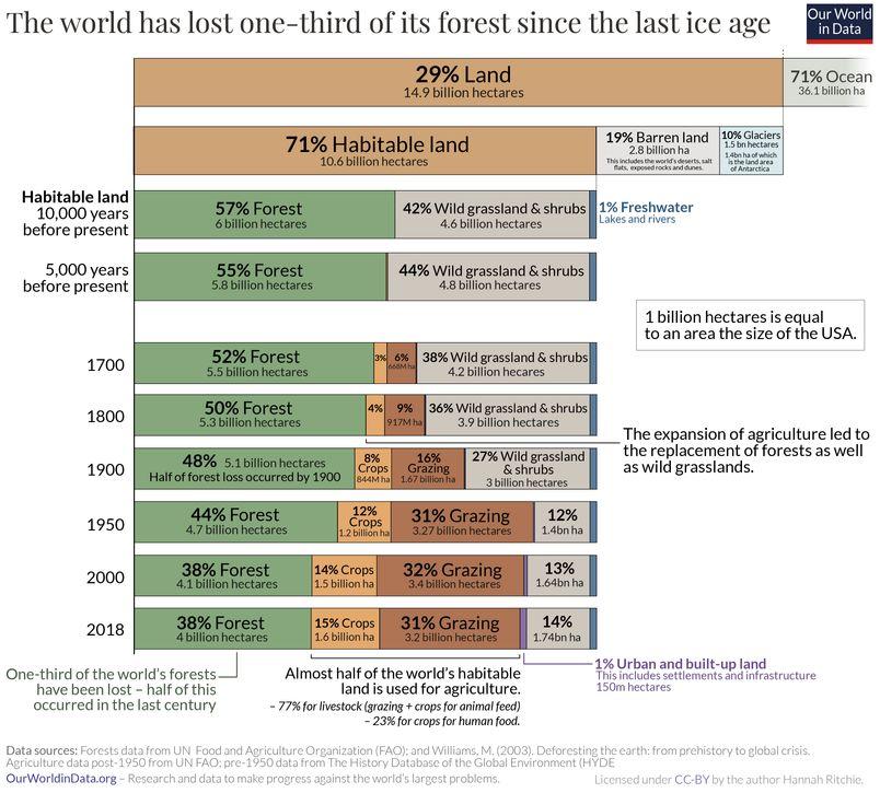 long term land use change deforestation environmental problems