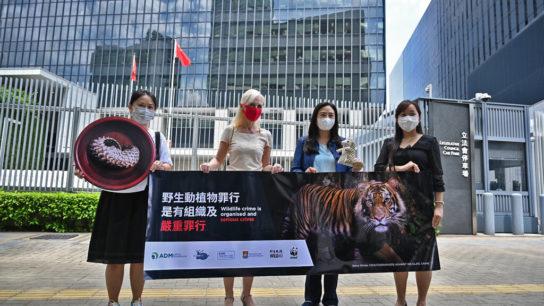 Hong Kong Passes Landmark Bill to Charge Animal Trafficking As A Serious Crime